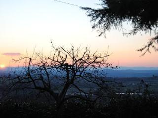terrazza sulle crete - Rapolano Terme vacation rentals