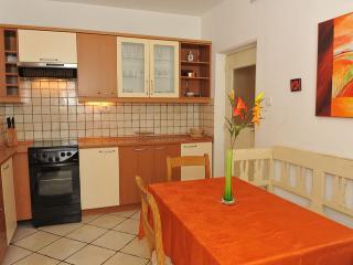 Central Apartment Iva TourAs - Ljubljana vacation rentals