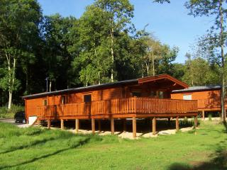 Pine View Lodge Nr.77, Kenwick Woods, Louth, Lincolnshire LN11 8NP - Louth vacation rentals