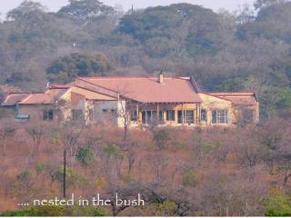 Beautiful Manor house with Internet Access and Dishwasher - Lusaka vacation rentals