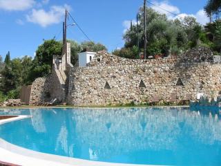 Shambala Pool  Ap . Studio S1 - Paleokastritsa vacation rentals