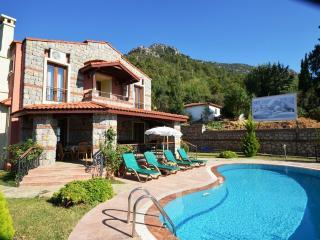 Villa Ahenk - Ovacik vacation rentals