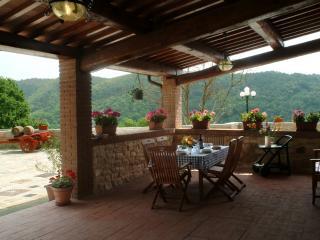 Villa il Castellaccio in Greve in Chianti - flat 3 - Lucolena vacation rentals