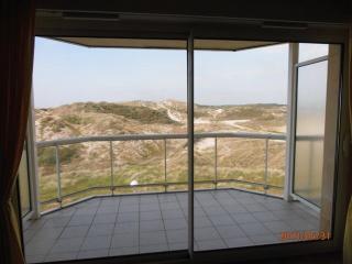 Résidence du Sunny Beach vue dunes et mer - Stella-Plage vacation rentals