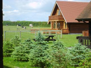 3 bedroom Chalet with Internet Access in West Stour - West Stour vacation rentals