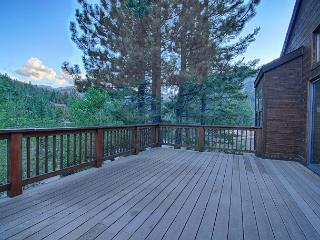 Alpine Meadows Endless View Home - Pet Friendly Vacation Rental with Hot Tub - Lake Tahoe vacation rentals