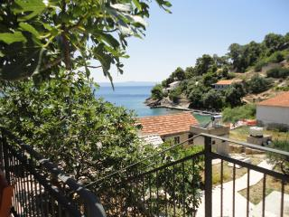 Paradise Apartments - 2 - Gdinj vacation rentals
