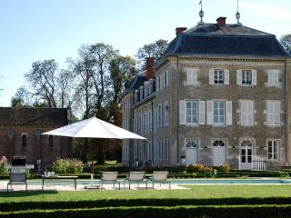 Perfect Chateau with Internet Access and A/C - Pierre-de-Bresse vacation rentals
