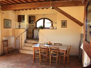 Holiday farmhouse apartment rental in Tuscany, property features beautiful garden and private fishing lake - San Gimignano vacation rentals