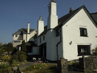 Donore Cottage, Dittisham - Dittisham vacation rentals