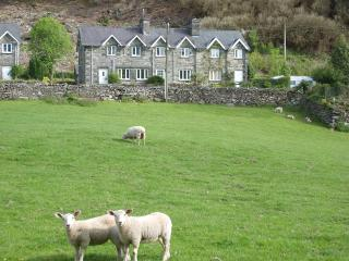 Nice Cottage with Television and DVD Player - Penmaenpool vacation rentals