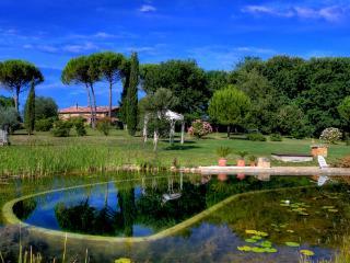 Fantastico appartamento in casolare tipico toscano - San Rocco a Pilli vacation rentals