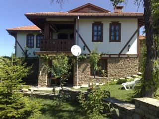 Holiday house near Tryavna - Tryavna vacation rentals