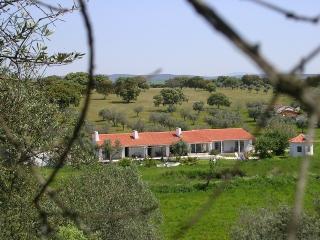 Lovely 7 bedroom Vacation Rental in Portalegre - Portalegre vacation rentals