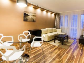 LUXURY, Wi-Fi, centrum - Warsaw vacation rentals