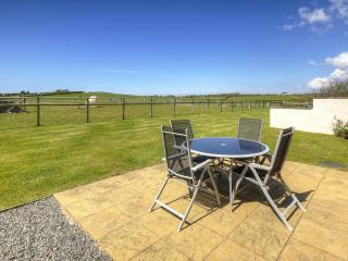 Carnedd Cottage Anglesey - Brynsiencyn vacation rentals