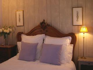Comfortable 4 bedroom B&B in Monts-sur-Guesnes with Internet Access - Monts-sur-Guesnes vacation rentals