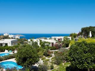 Aegean Hills - Yalikavak vacation rentals