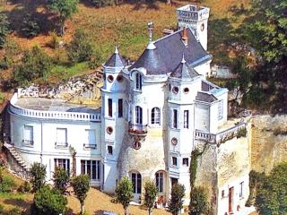 Nice Chateau with Internet Access and Central Heating - Montrichard vacation rentals