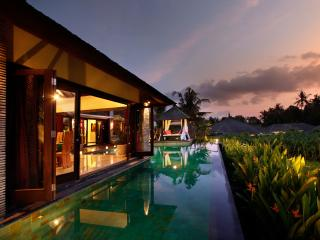4 Bedroom Villa Near Echo Beach - The Bale Tokek - Canggu vacation rentals