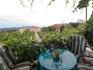 Holiday house near Dubrovnik - Brsecine vacation rentals