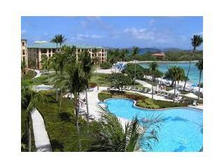 Pool Area and Caribbean - Ritz Carlton Club Condo, St Thomas, VI Best Season - Saint Thomas - rentals