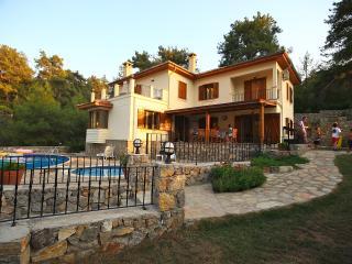Bright 6 bedroom Villa in Yesiluzumlu - Yesiluzumlu vacation rentals