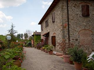 Nice 2 bedroom Greve in Chianti Farmhouse Barn with Internet Access - Greve in Chianti vacation rentals