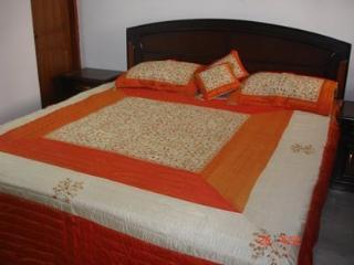 A Class 3 bed luxury apartment - New Delhi vacation rentals