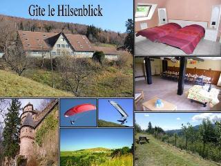 Appart avec balcon vue dégagée - Linthal vacation rentals