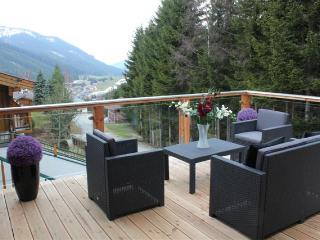 Large self catering private 3 bedroom log chalet with beautiful mountain views. - Filzmoos vacation rentals