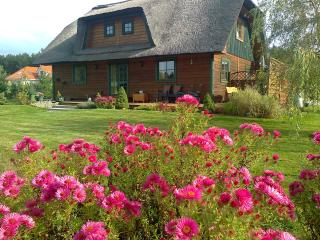 3 bedroom House with Internet Access in Gdynia - Gdynia vacation rentals