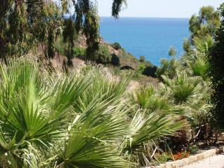 Olive House to explore Sicily (A) - Cefalu vacation rentals