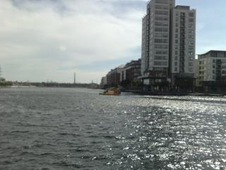 239 Waterside - Dublin vacation rentals