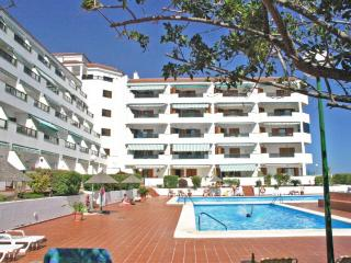 Nice Condo with Internet Access and Garden - Las Galletas vacation rentals