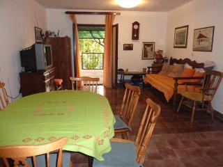 2 bedroom House with Internet Access in Stari Grad - Stari Grad vacation rentals