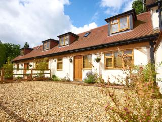 Comfortable 3 bedroom Cottage in Fordingbridge - Fordingbridge vacation rentals