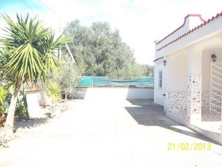 3 bedroom Villa with A/C in Pulsano - Pulsano vacation rentals