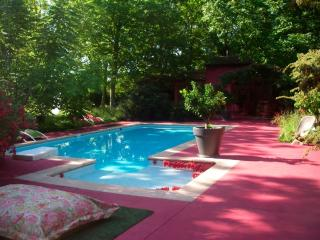 Serendip: Artistic 3 bedroom house on secluded Bathelasse Island in Avignon, features private grounds and swimming pool - Avignon vacation rentals