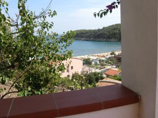2 bedroom Condo with A/C in Fetovaia - Fetovaia vacation rentals