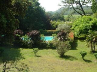 Lilas - Remoulins vacation rentals