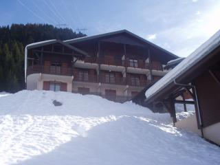 1 bedroom Condo with Central Heating in Chatel - Chatel vacation rentals