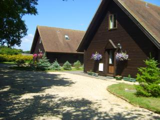 Nice 3 bedroom Chalet in West Stour - West Stour vacation rentals