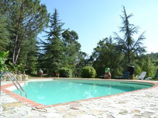 Vintage Apt Tuscany/pool/Wi-Fi - Montevarchi vacation rentals