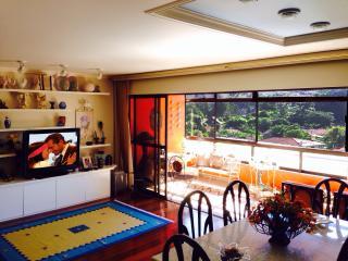 Best Loft - CBF Soccer Field - Rio de Janeiro vacation rentals