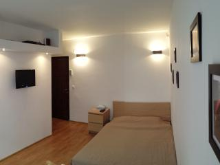 Cozy Miercurea-Ciuc Studio rental with Internet Access - Miercurea-Ciuc vacation rentals
