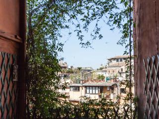 Trastevere lovely terrace apar - Rome vacation rentals