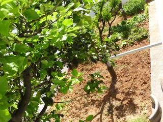 Villetta a schiera indipendente - Presicce vacation rentals