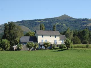 Nice Gite with Internet Access and A/C - Tardets-Sorholus vacation rentals