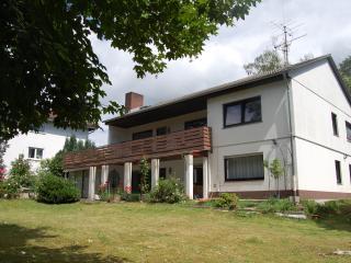 ELISA Apartment - 2 rooms, 50 m2 - Bad Nauheim - Bad Nauheim vacation rentals